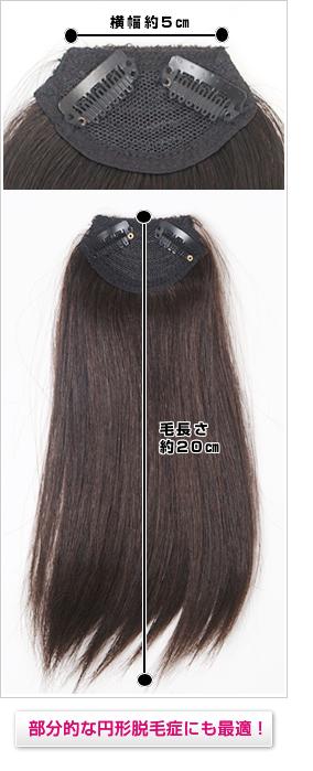 人毛の前髪ウィッグ激安カラーできる小さなヘアピース