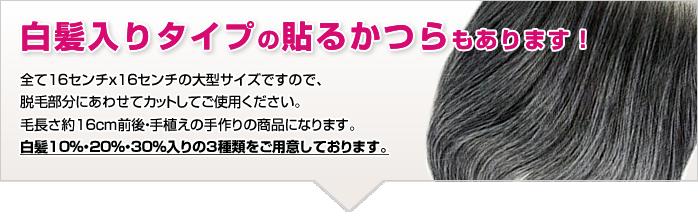 白髪入りの貼るかつら 自毛に白髪ある人用