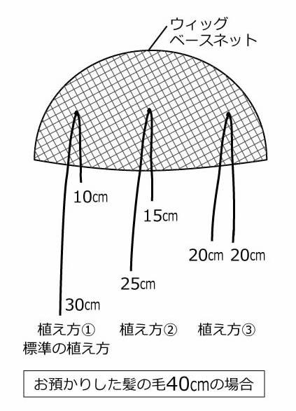 地毛で作成するヘアピースの構造