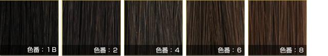 来店不要のオーダーウィッグ hanahanacollection 髪の色5色